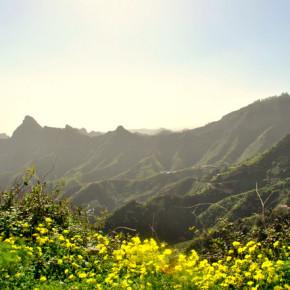 ANAGA-vuoristo, Teneriffan vihreät keuhkot.